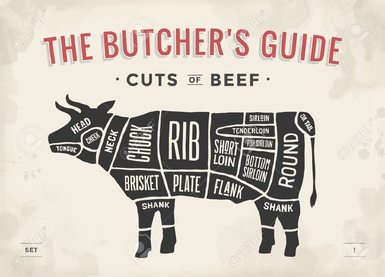 Cut of beef set poster butcher diagram and scheme cow vintage cut of beef set poster butcher diagram and scheme cow vintage typographic hand pooptronica