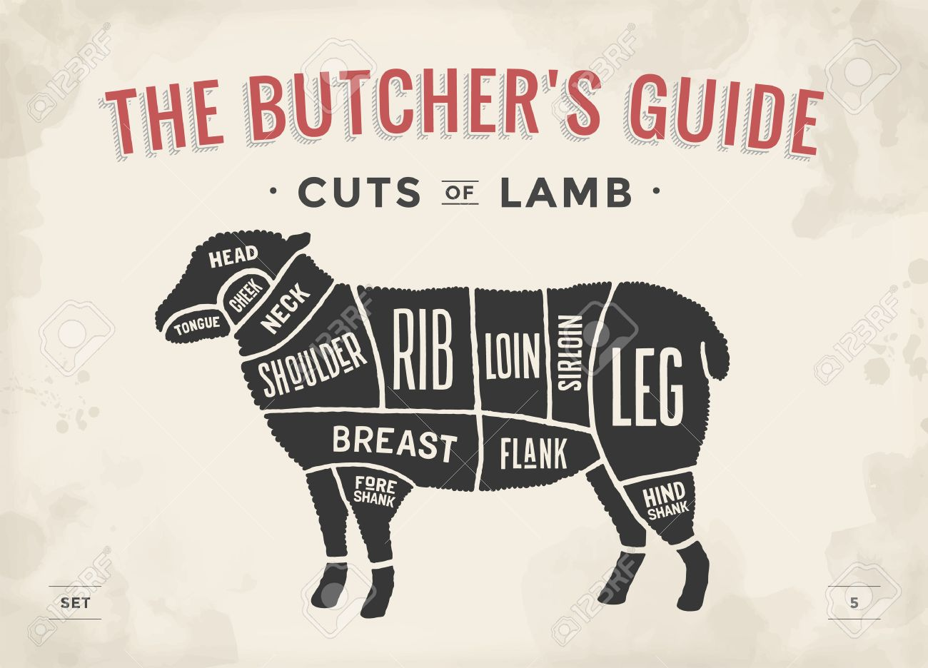 Cut of beef set poster butcher diagram and scheme lamb vintage cut of beef set poster butcher diagram and scheme lamb vintage typographic hand pooptronica
