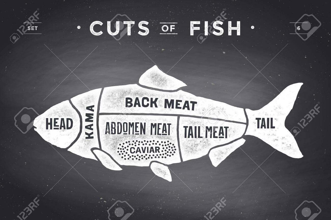 Cut Of Meat Set. Poster Butcher Diagram And Scheme - Fish. Vintage ...