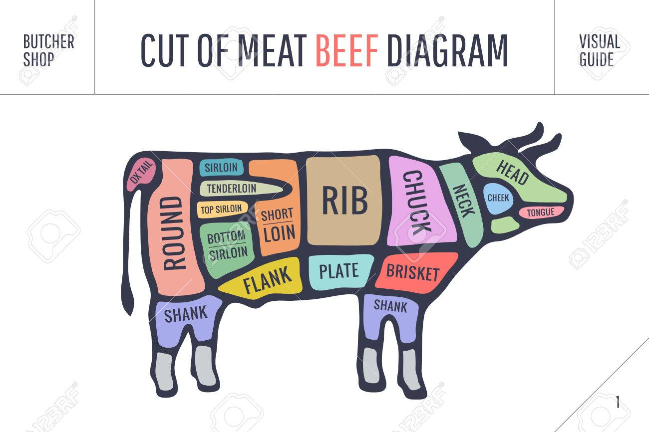 Cut of meat set poster butcher diagram and scheme cow colorful poster butcher diagram and scheme cow colorful vintage typographic pooptronica Gallery
