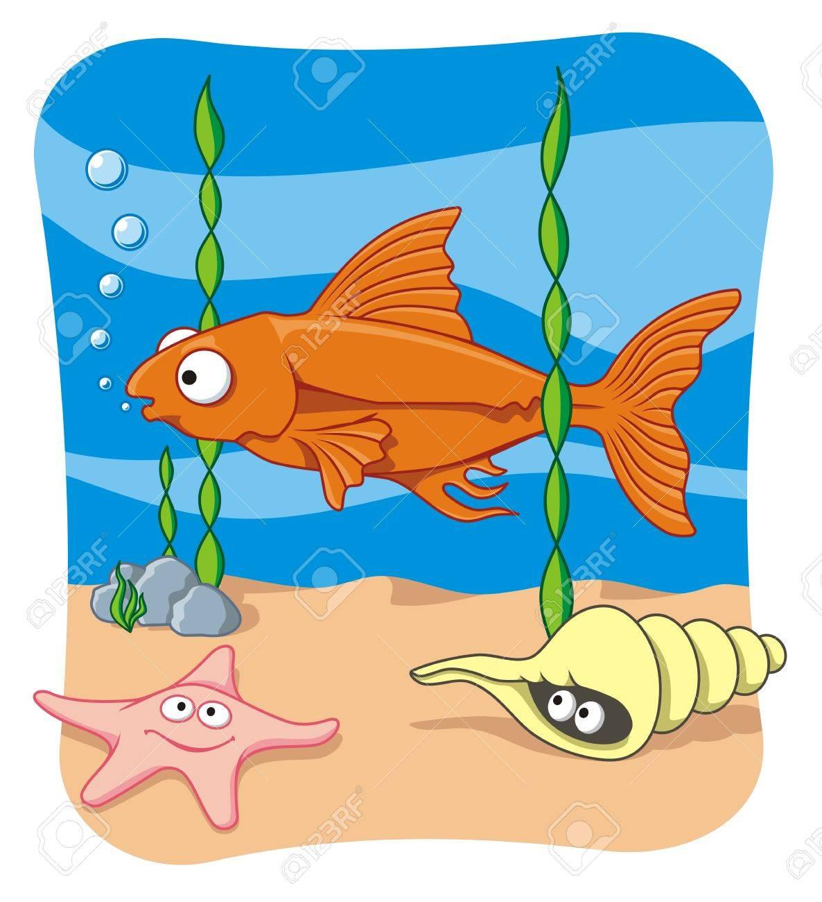 Sea life - 2626806