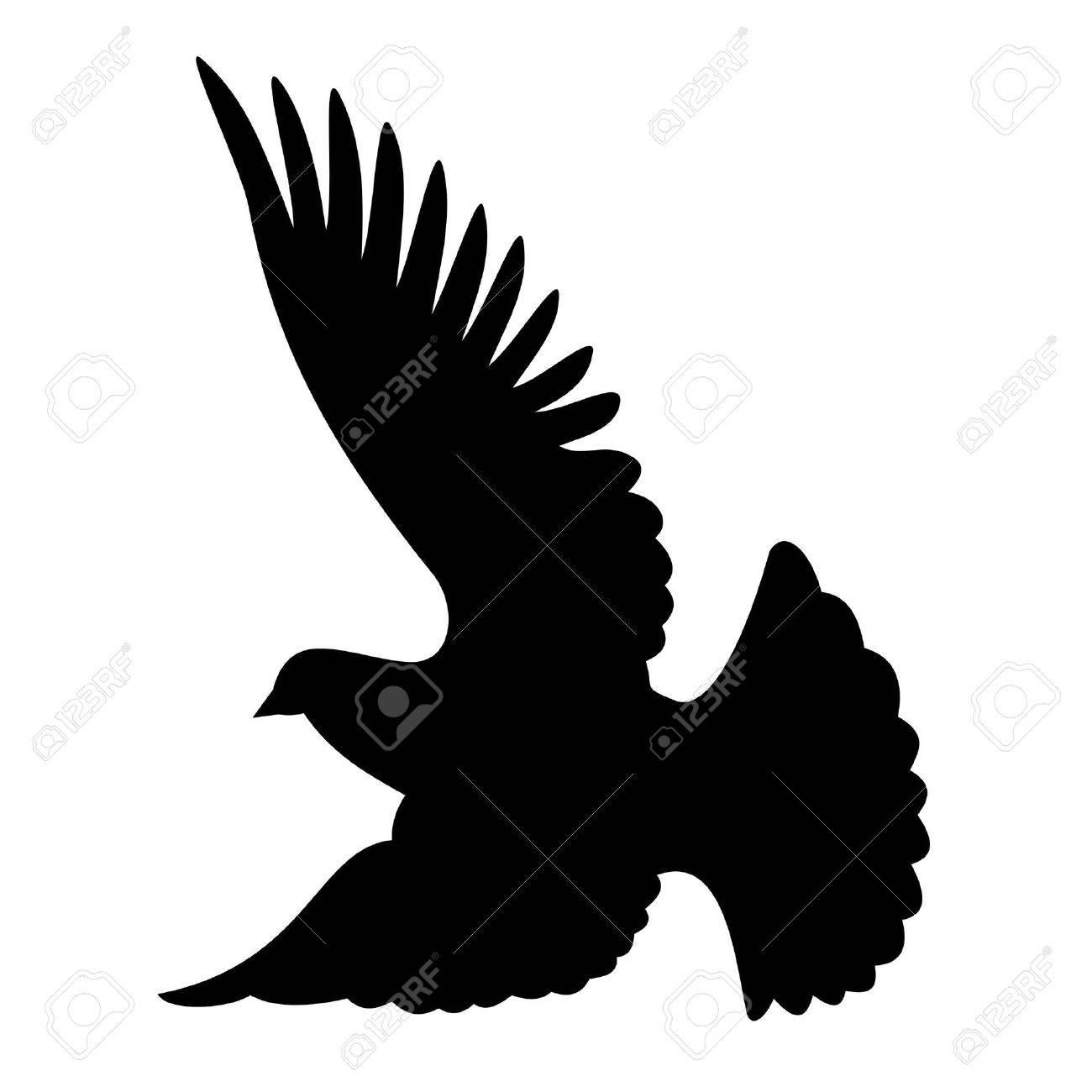 Flying dove silhouette on white background Stock Vector - 2985982