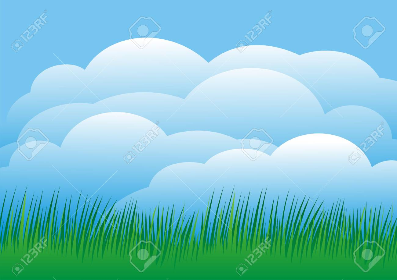 Sky background with green grass - 3021776