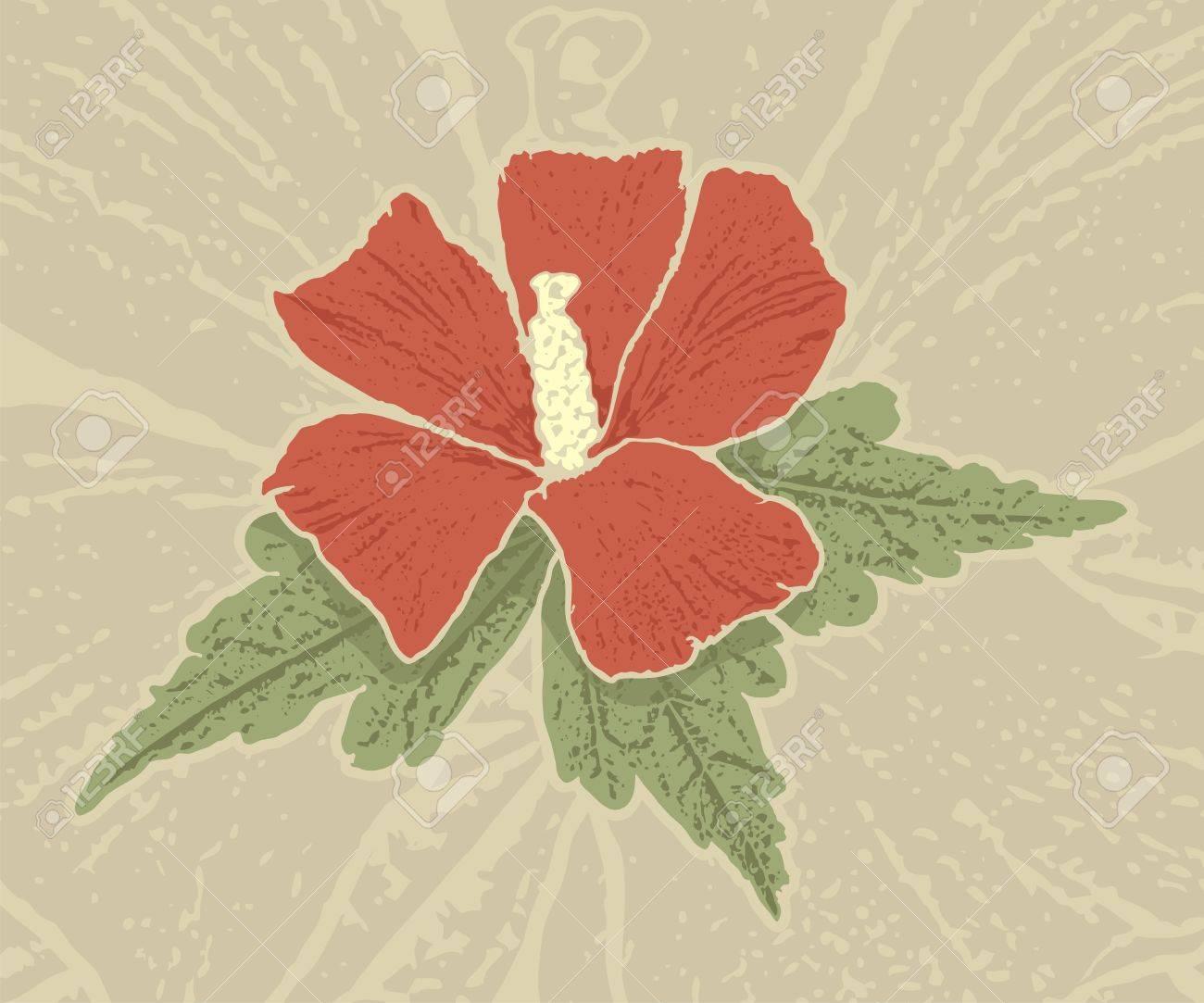 Red hibiscus flower with grunge shading on grunge beige background. - 10255307