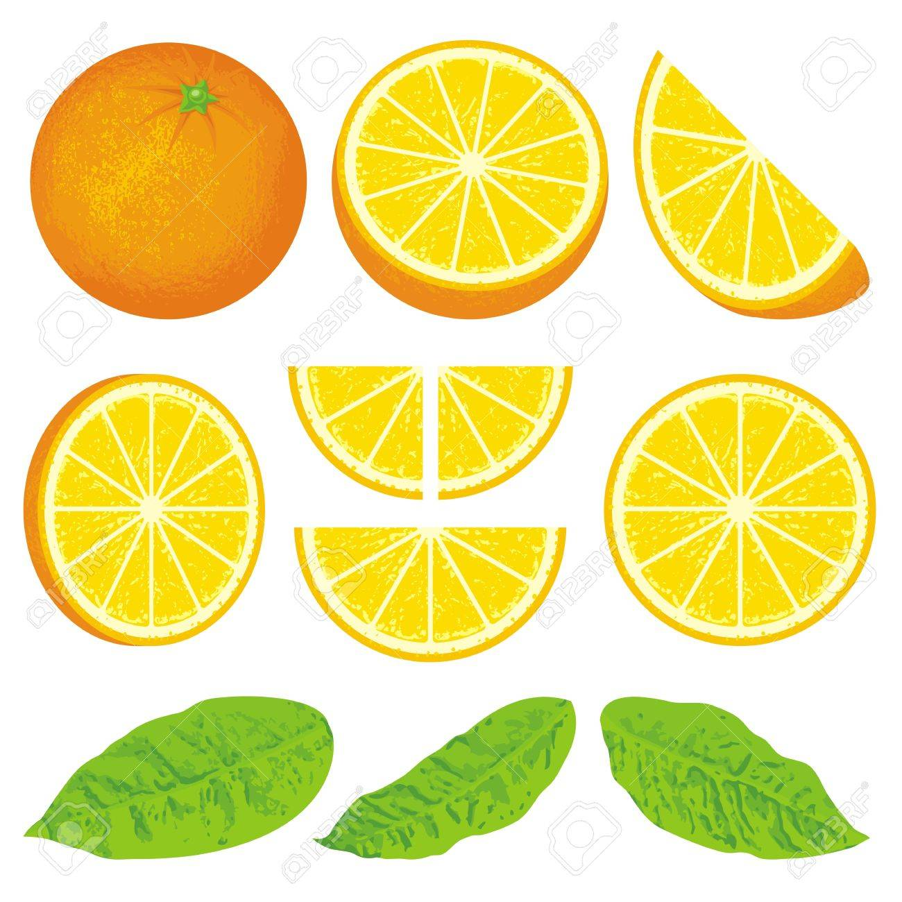 Orange and slices at different angles, also three versions of leafs all with grunge shading. - 10411676