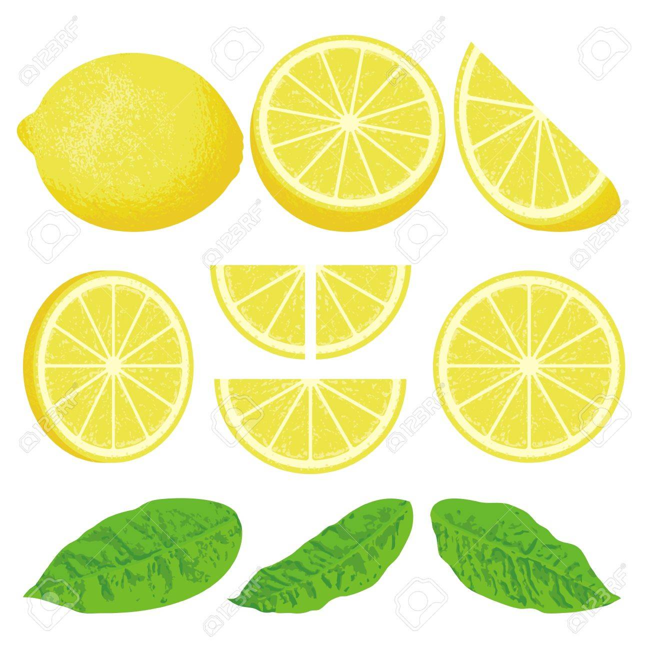 A whole lemon and slices at different angles, also three versions of leaves. - 10537527