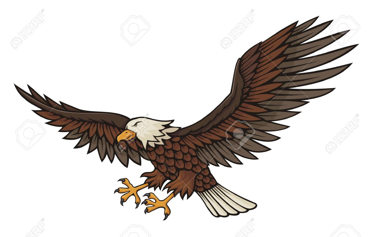 Eagle attacking illustration isolated on white background. Stock Vector - 10615607