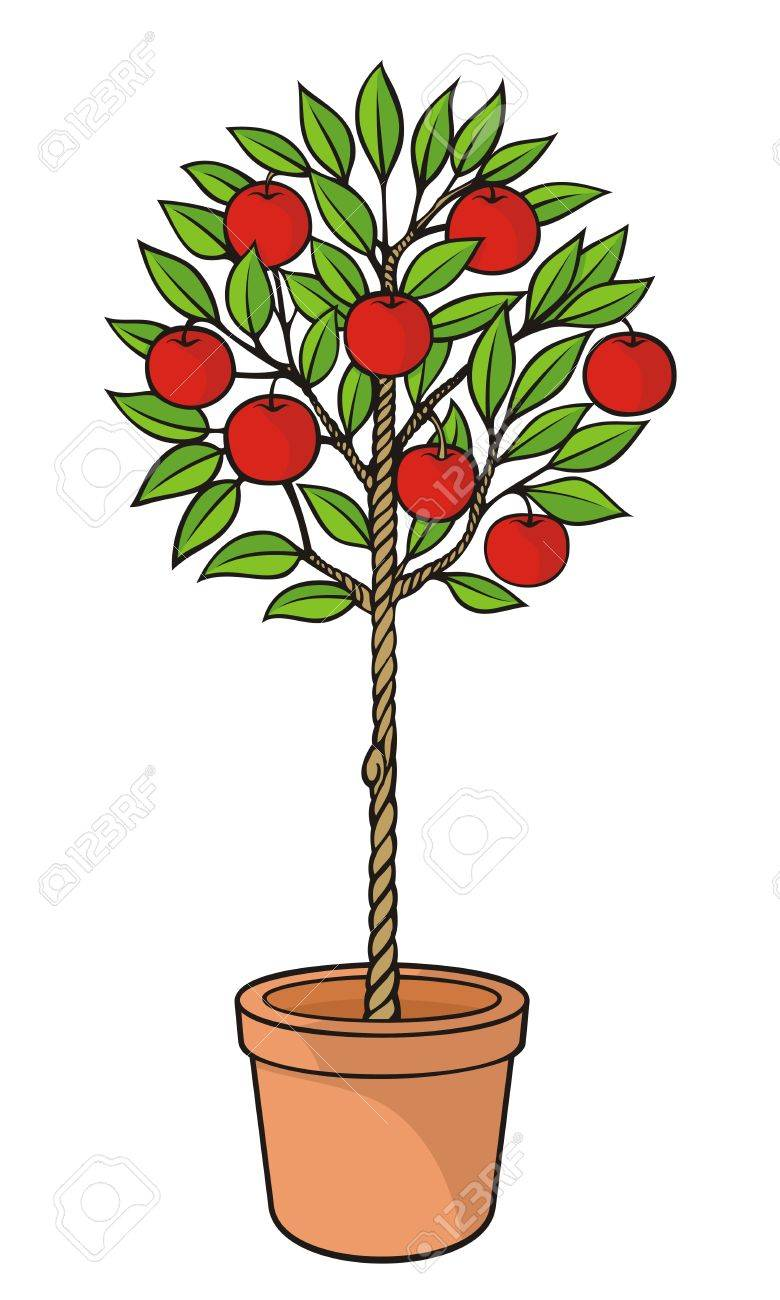 Decorative Apple Tree With Red Apples In Plant Pot Royalty Free Cliparts Vectors And Stock Illustration Image 13777205