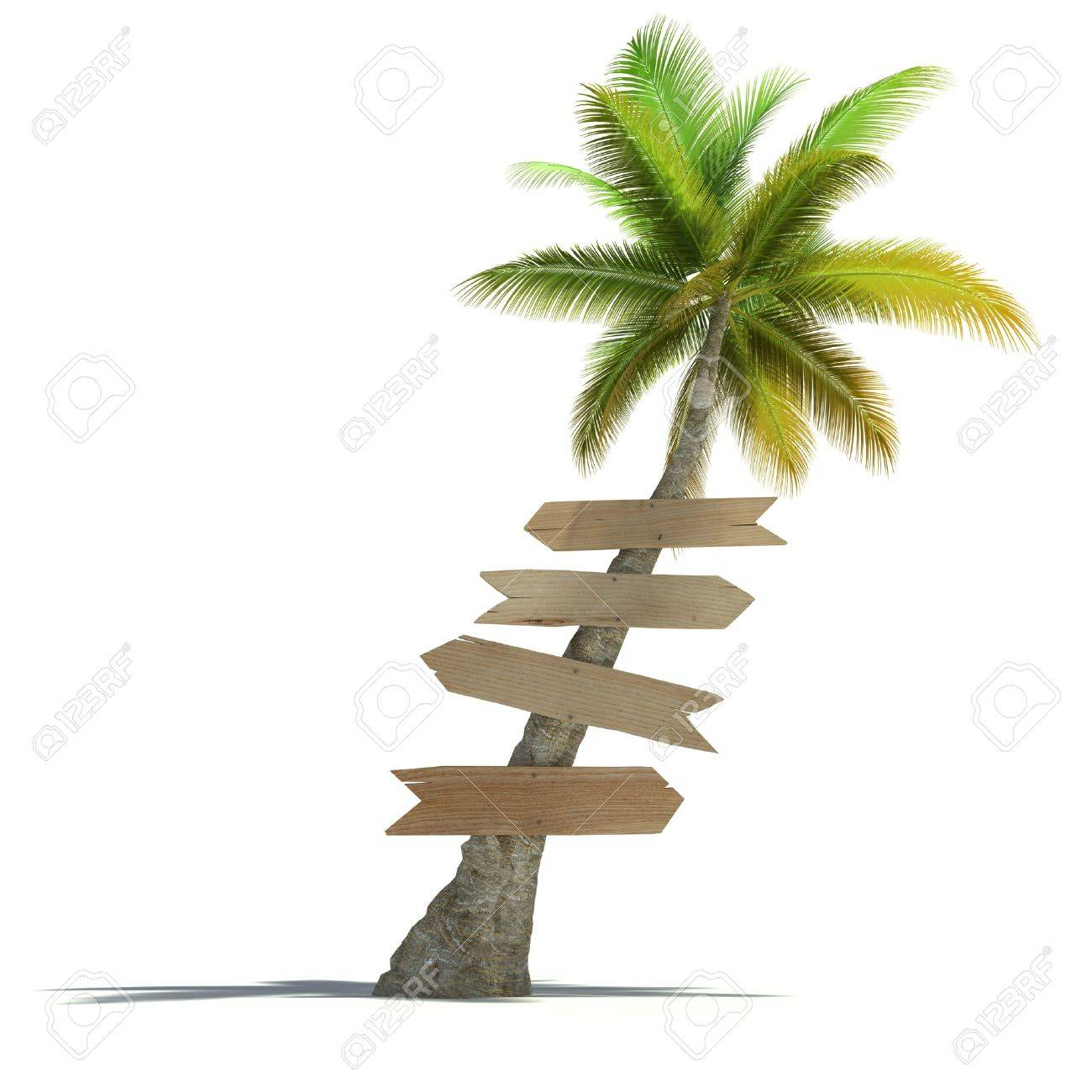 Palm tree with signboards attached to the trunk in a neutral background Stock Photo - 18128568