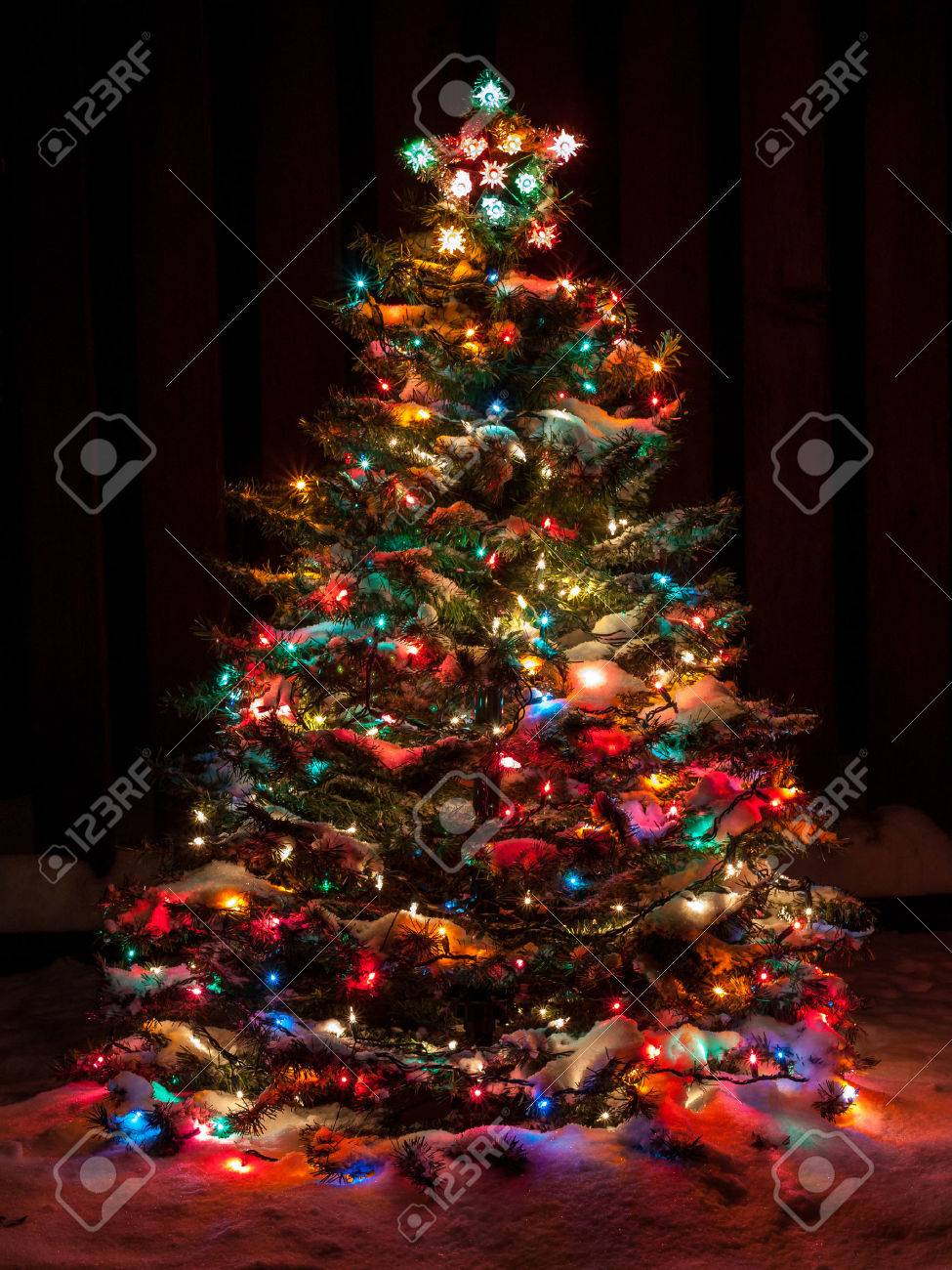 Attirant Snow Covered Christmas Tree With Multi Colored Lights Stock Photo   33176812