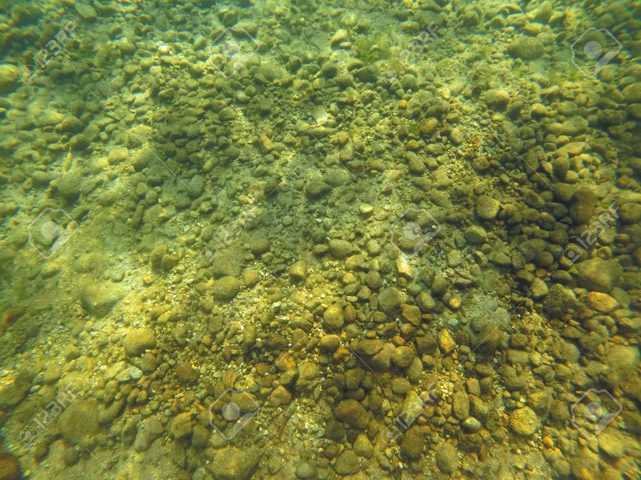 Background Of Rocks, Sand, And Algae On The Bottom Of A Lake Stock Photo,  Picture And Royalty Free Image. Image 65348577.