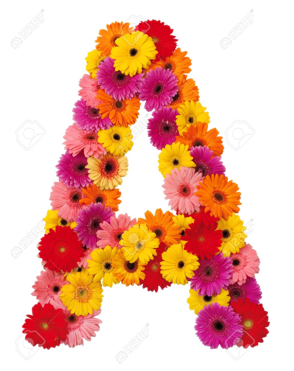 Letter A   Flower Alphabet Isolated On White Background Stock Photo    22261388