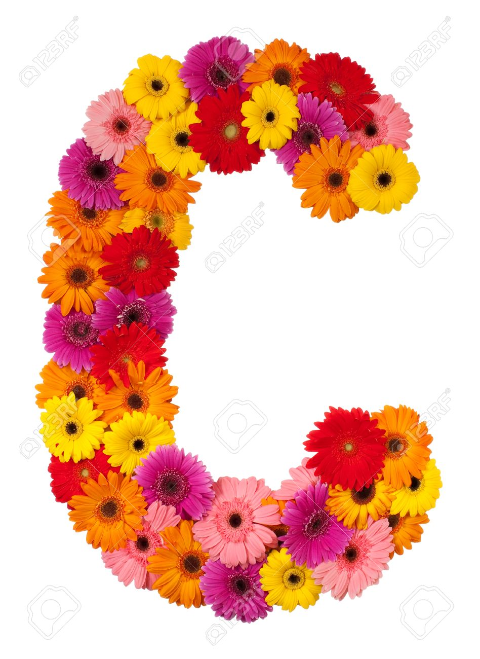 Цветы на букву н фото