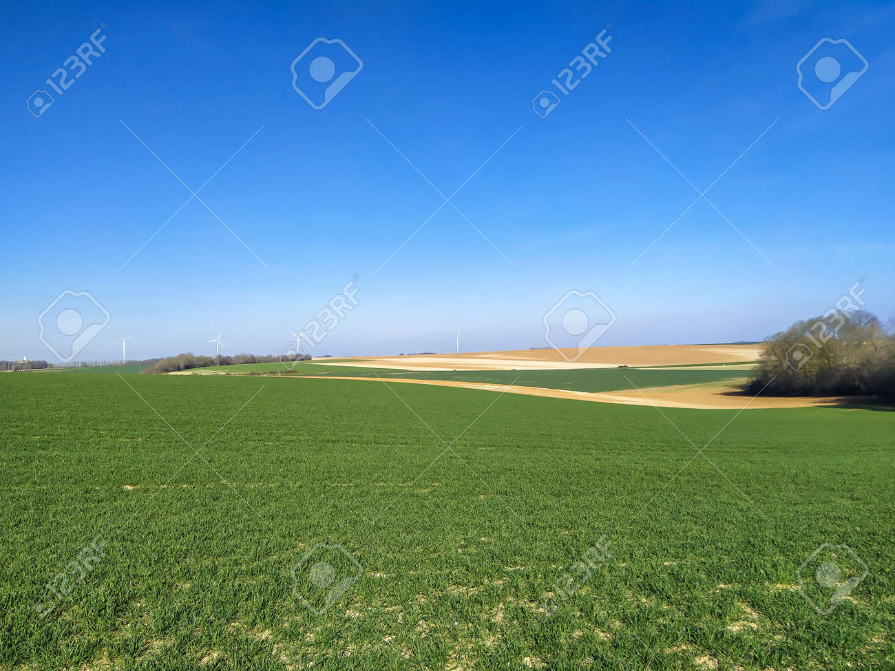 fields in spring in northern France - 167483968