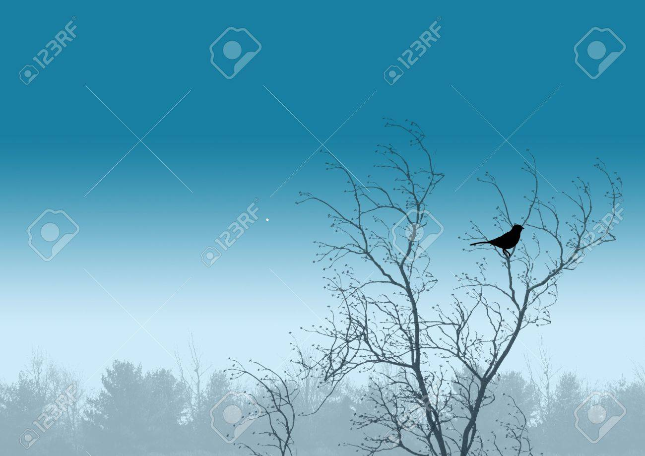 bird illustration Stock Illustration - 356777