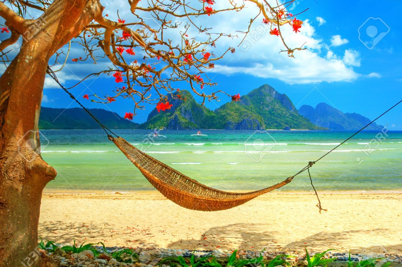 Tropical Beach Scene With Hammock Stock Photo Picture And Royalty