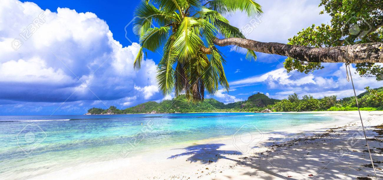 white snady beach and crystal waters of Seychelles islands - 44685730