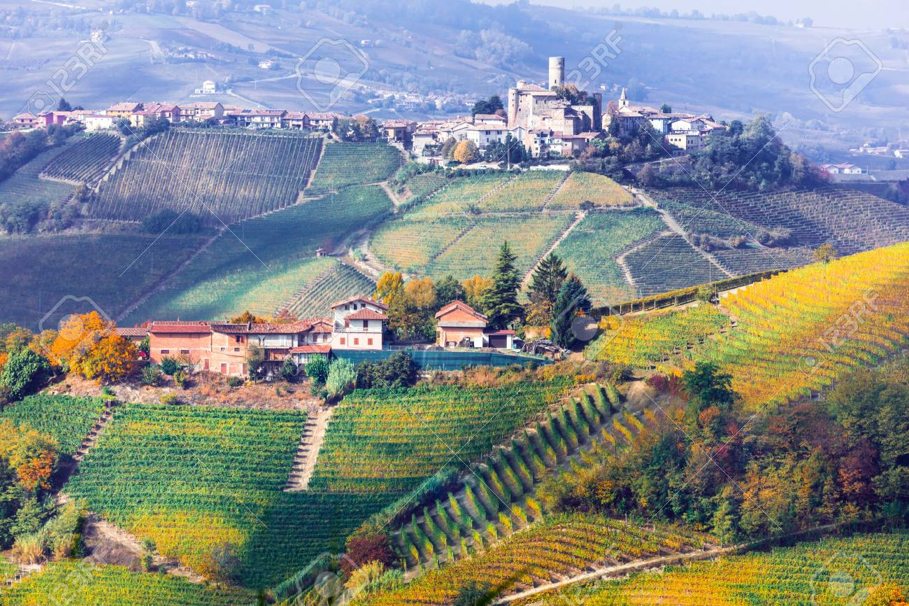 Beautiful Barolo village, panoramic view, Italy. - 81710766