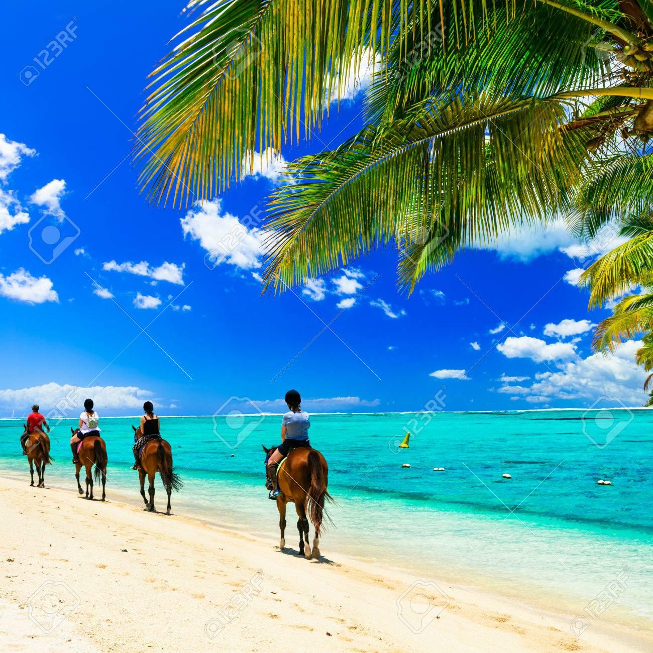 Panoramic view of beautiful beach, azure sea palm tree and horses, Mauritius island. - 82069277