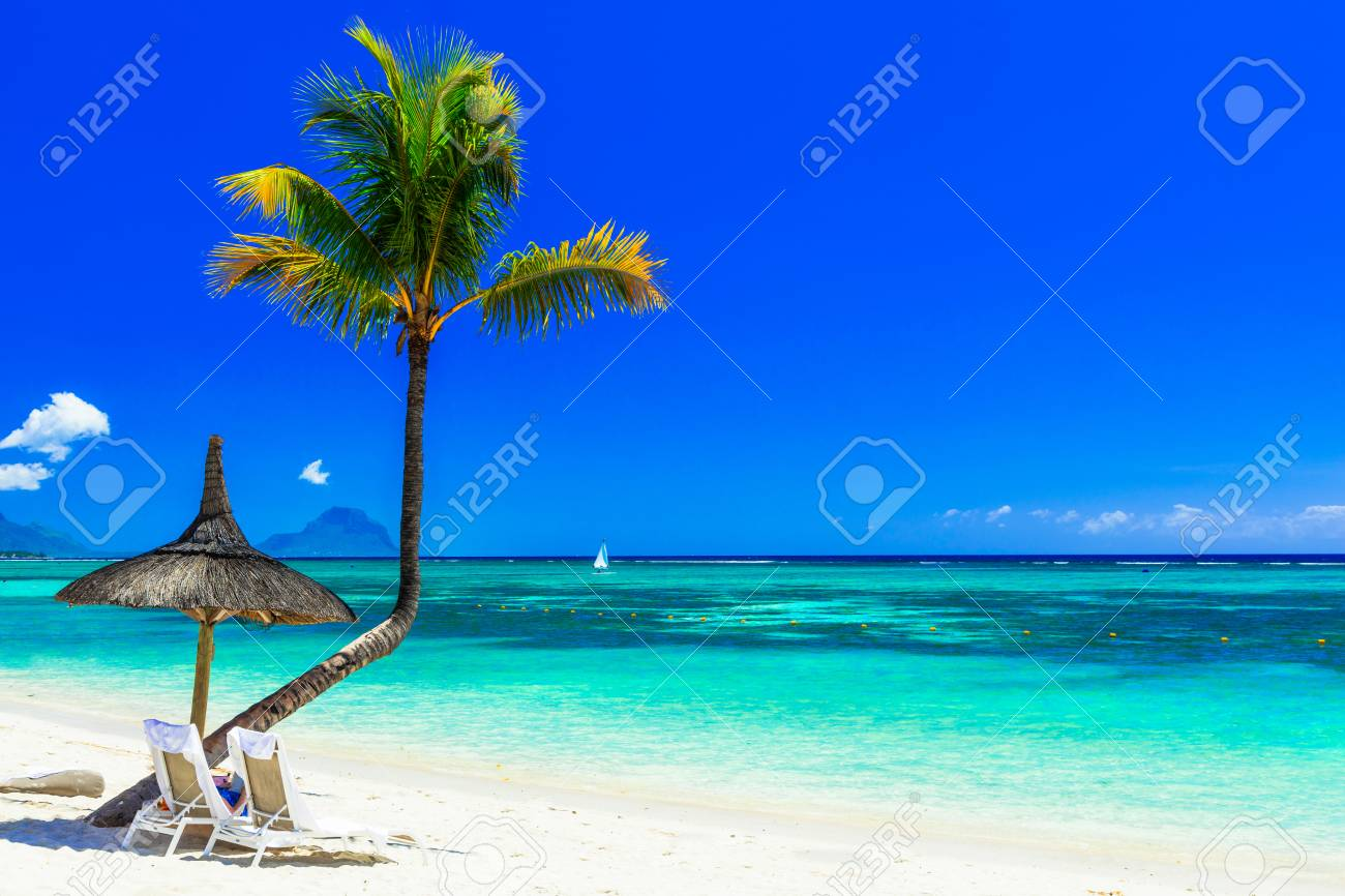 Beautiful beach of Mauritius island, view from the azure sea and palm tree. - 91120197