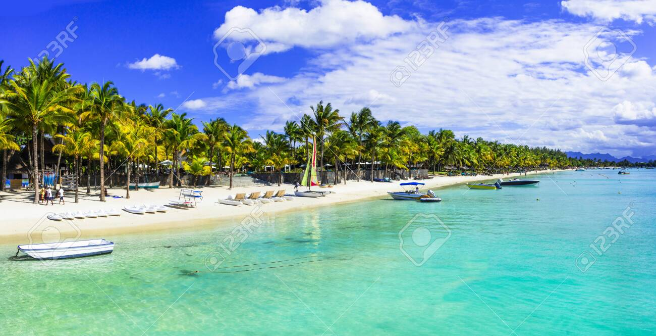 Turquoise sea and palm trees in Mauritius island - 124505238