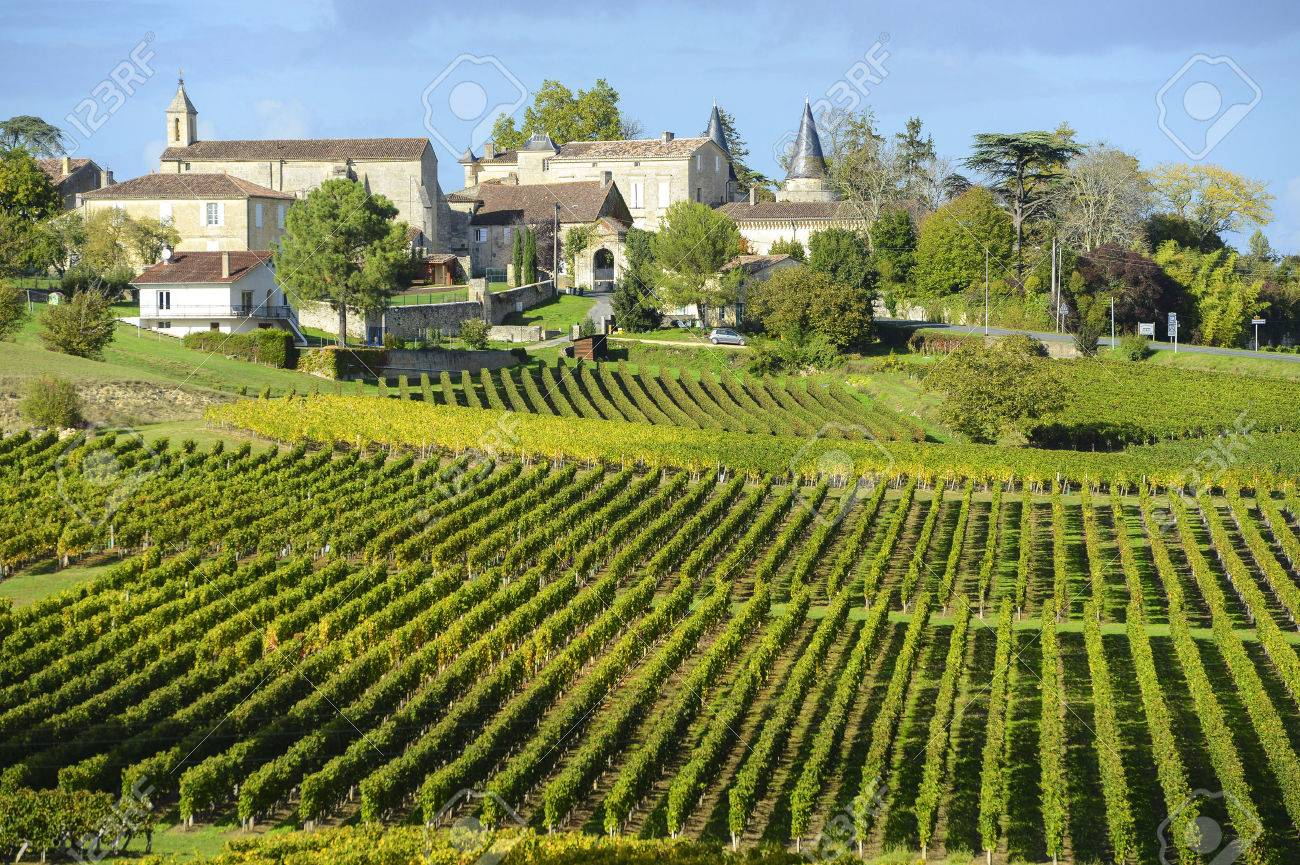 Vineyards of Saint Emilion, Bordeaux Vineyards Stock Photo - 25772740