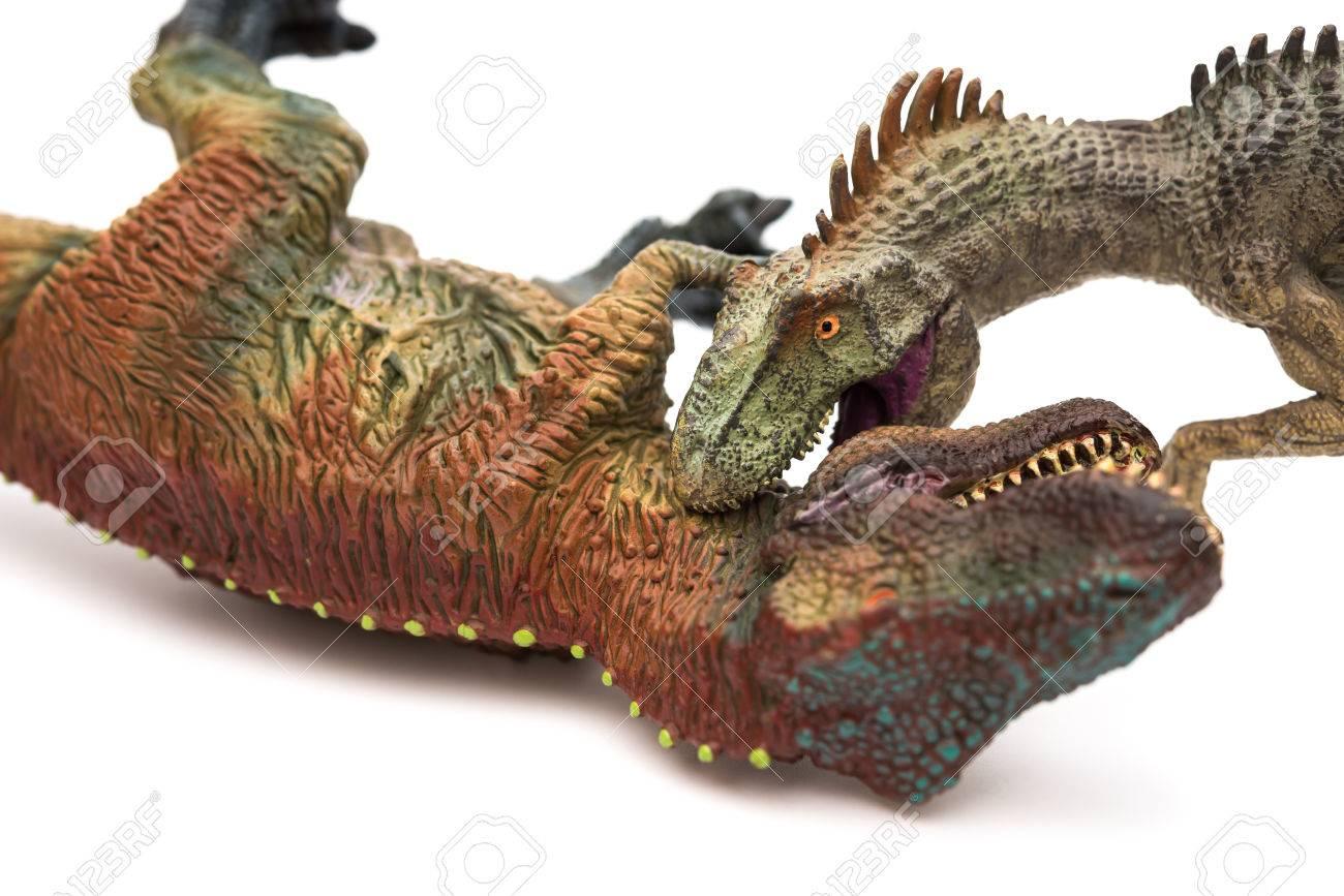 白い背景にティラノサウルスのおもちゃをかむアロサウルス の写真素材