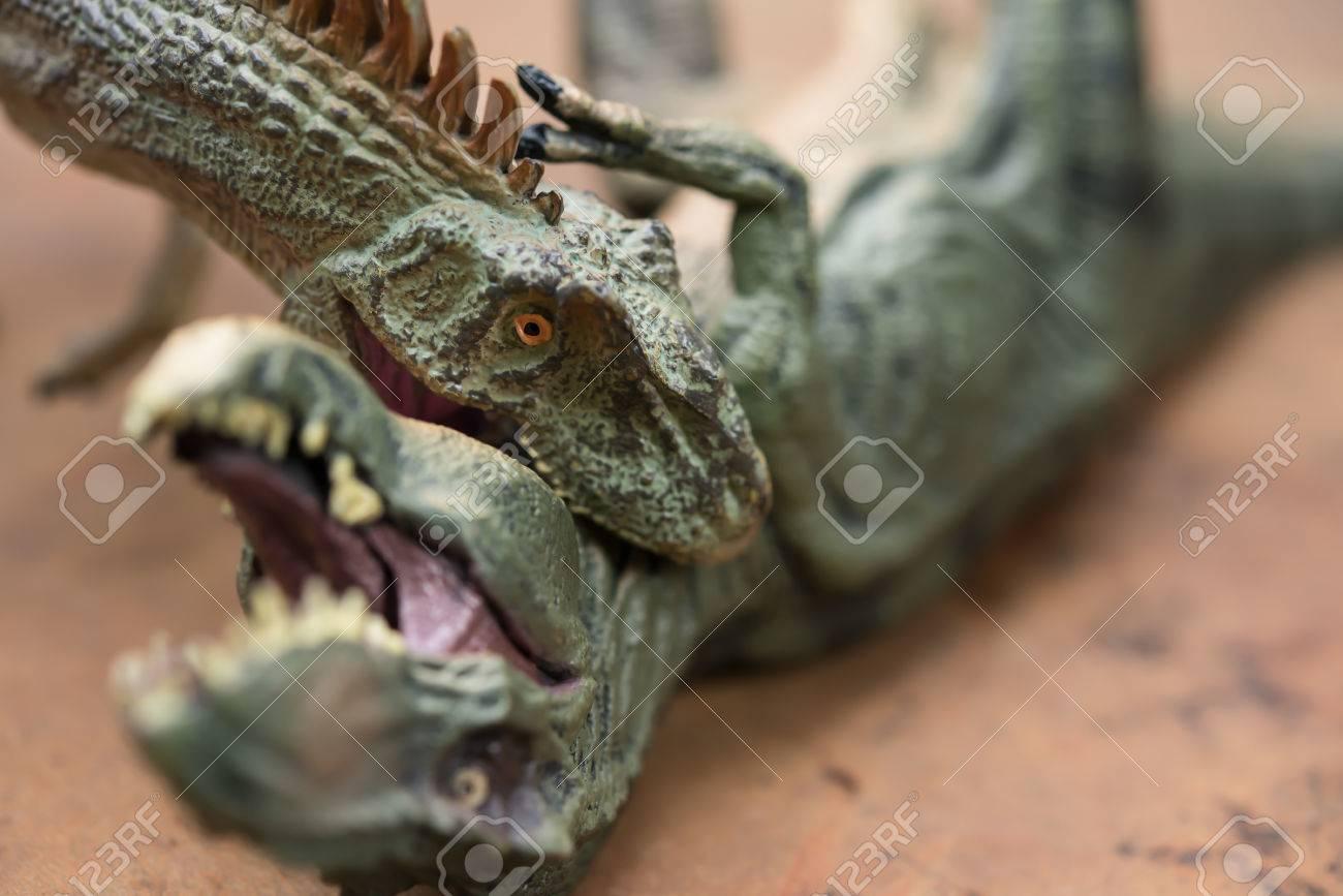 ティラノサウルスのおもちゃをかむアロサウルス の写真素材画像素材