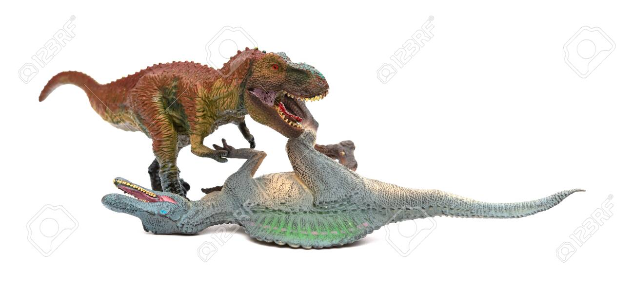 tyrannosaurus fights with spinosaurus on a white background - 121080950