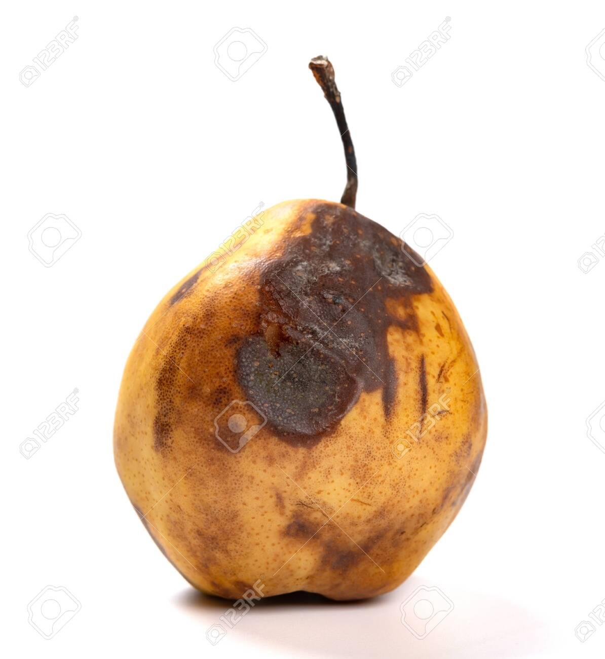 badly overripe pear on a dark background - 124687277