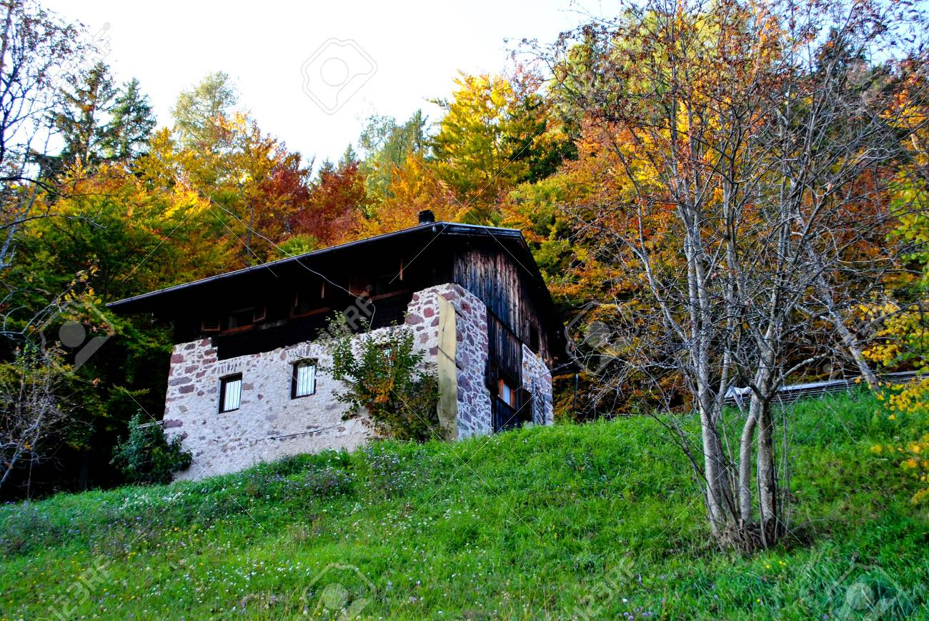 house in the woods in autumn Stock Photo - 8205055