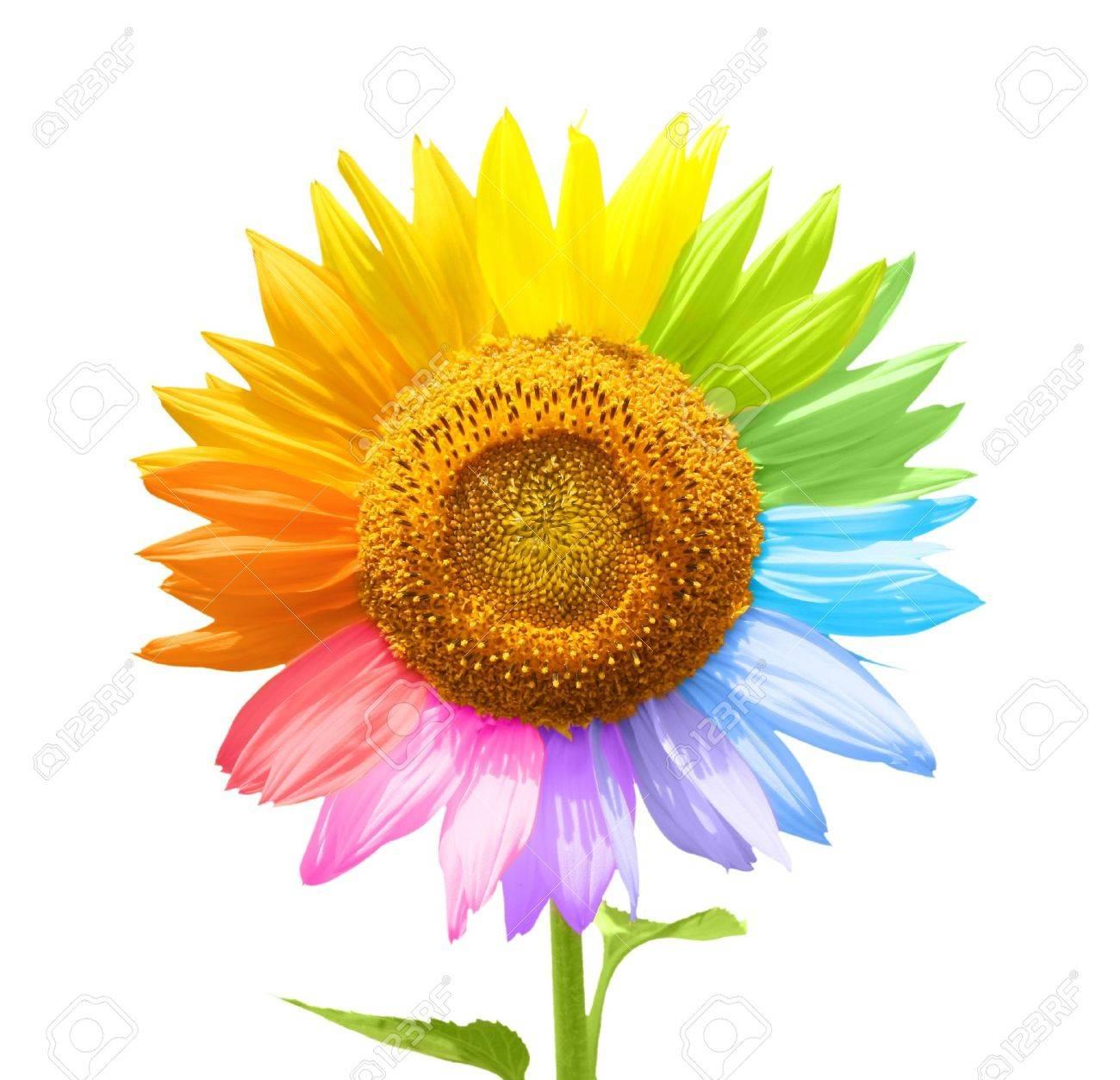 Tolle Sonnenblumen Malvorlagen Für Kinder Ideen - Malvorlagen Ideen ...