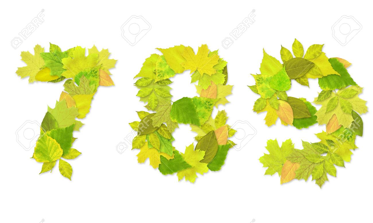 Numbers with a green leaves. Set 3 Stock Photo - 6363130