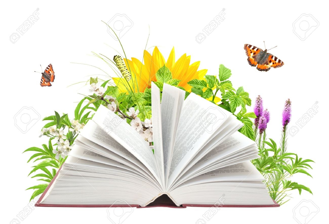 Book of nature. Isolated over white Stock Photo - 12335255