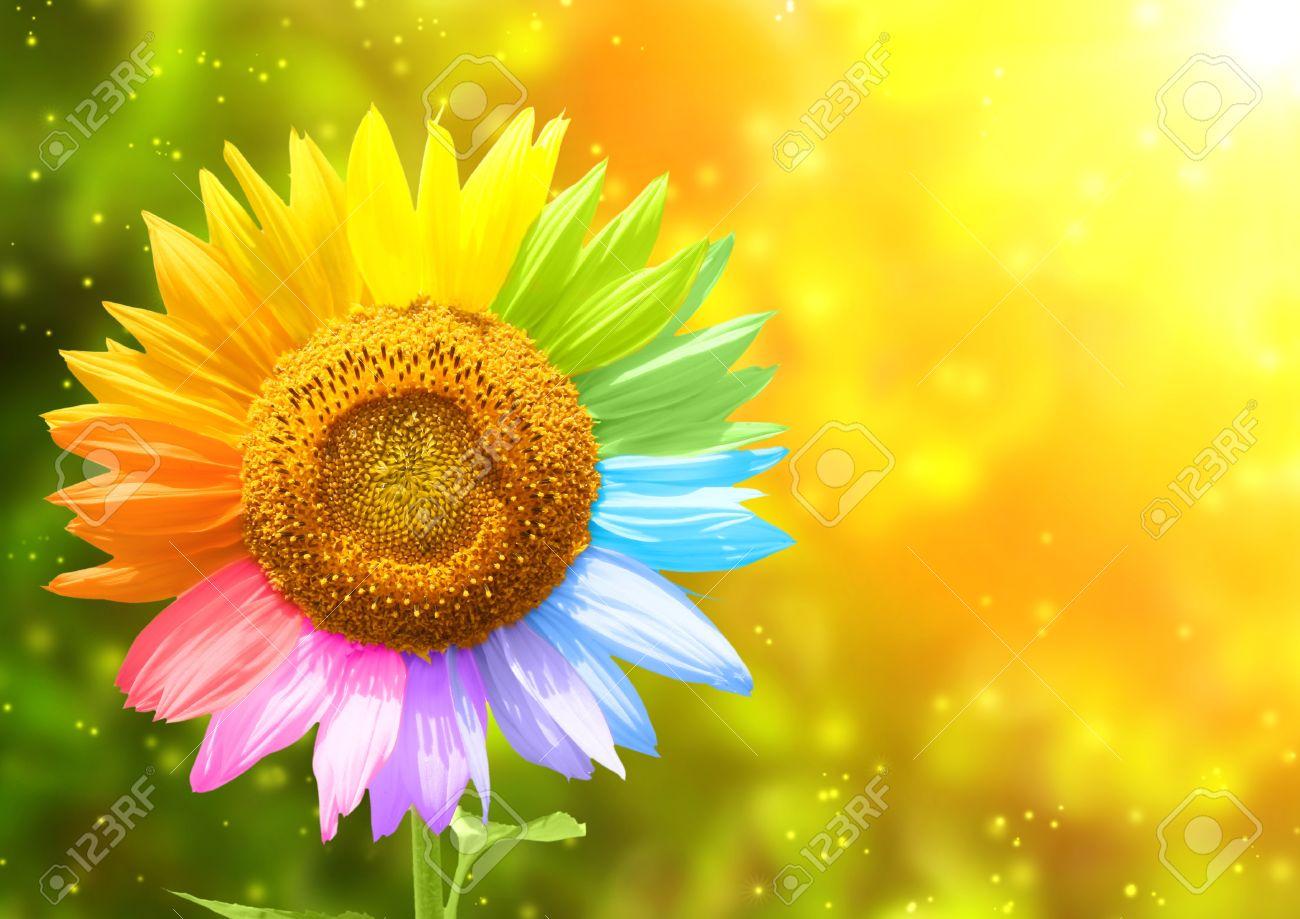 Tolle Sonnenblumen Färbung Bilder Galerie - Malvorlagen Von Tieren ...