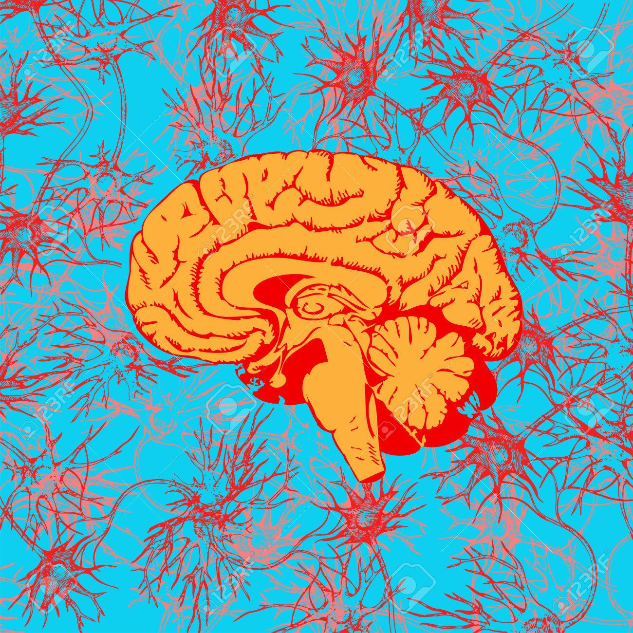 Human brain penetrated by neural communications - 6850327