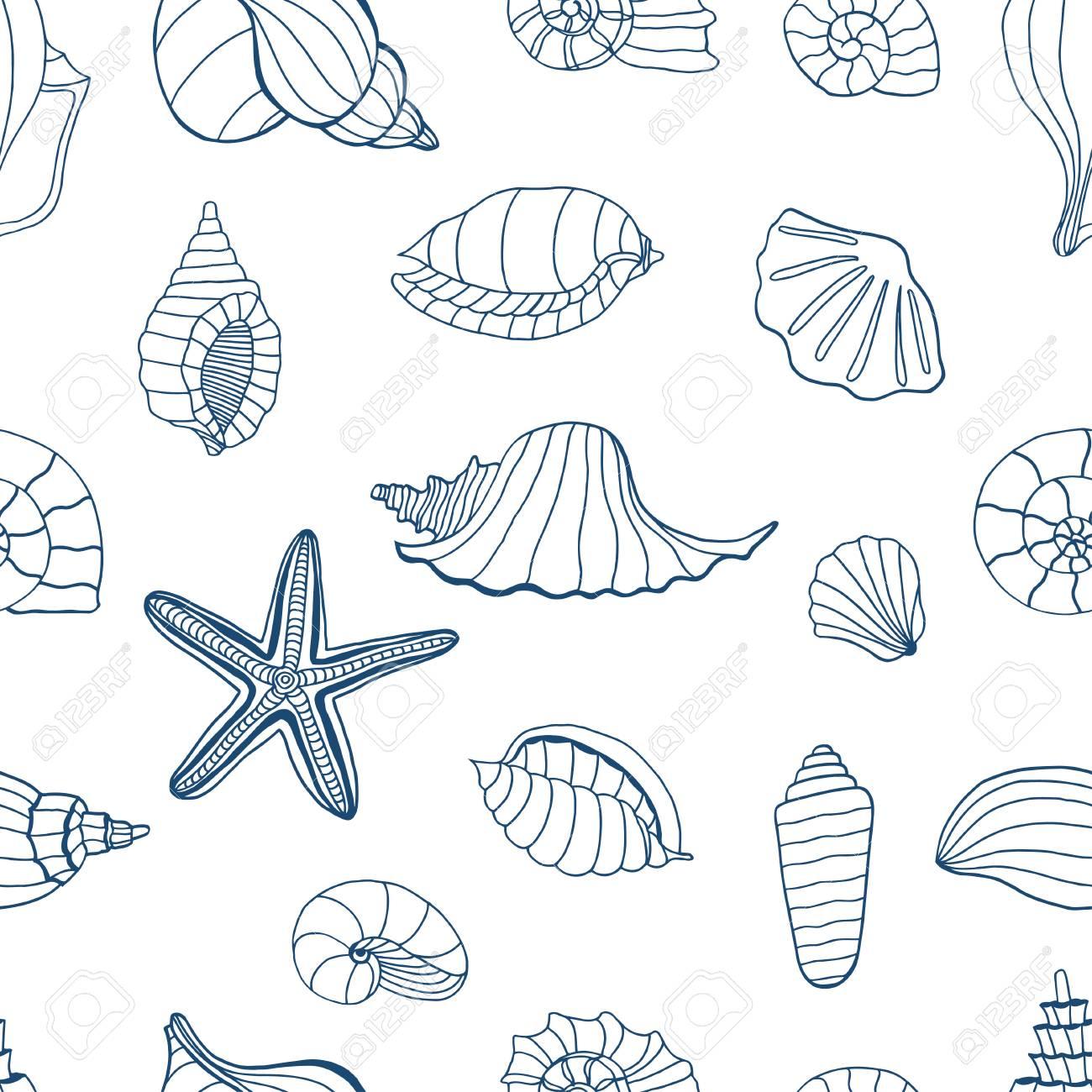 Conchas De Mar Patrón Transparente Azul Y Blanco Para Colorear