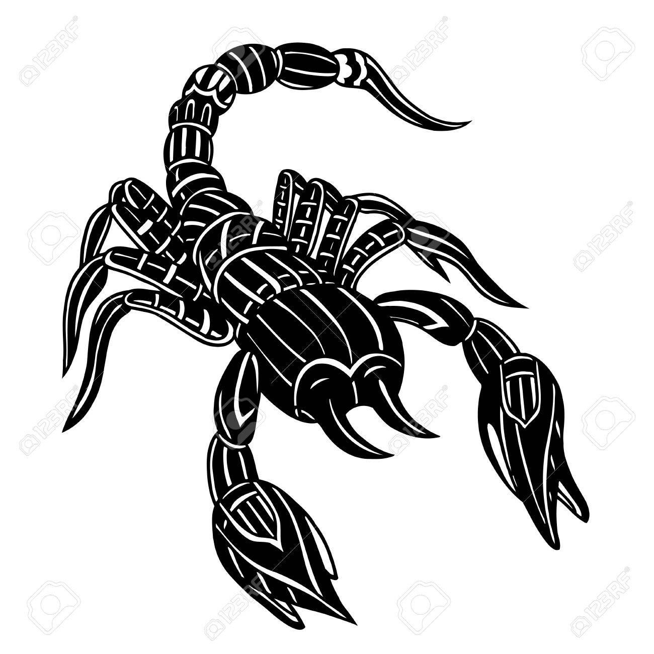 Vektor Der Abstract Skorpion Line Art Schwarze Und Weiße Hand