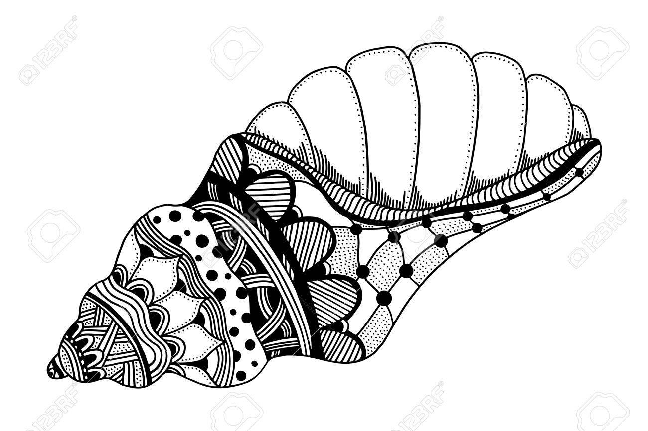 Wunderbar Meer Shell Malvorlagen Zeitgenössisch - Beispiel ...