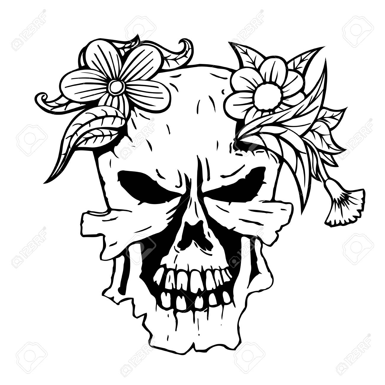 Skull With The Succulent Plants And Flowers Vector Illustration Royalty Free Cliparts Vectors And Stock Illustration Image 64415375