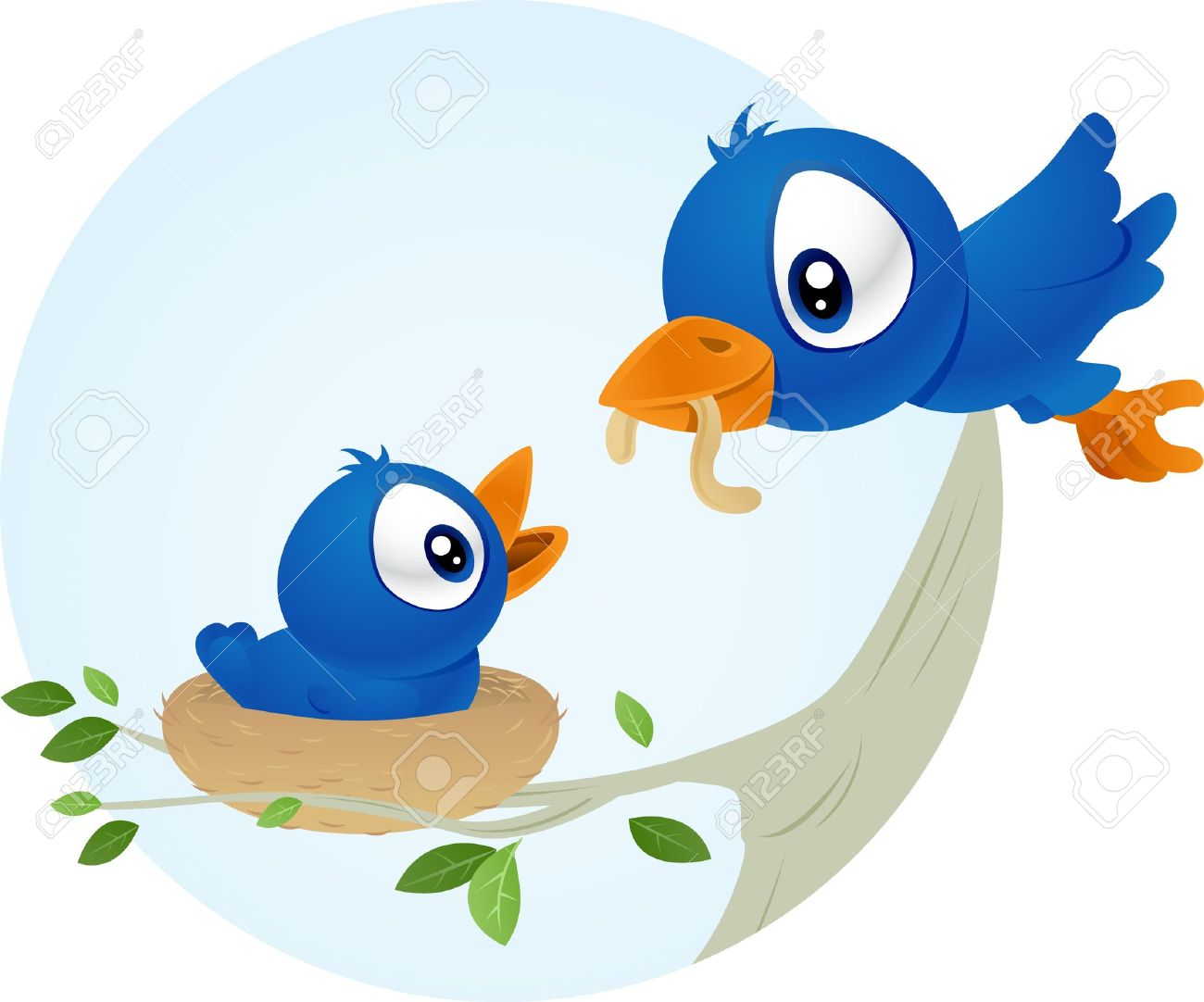 blue bird feeding hr young baby stock photo picture and royalty rh 123rf com baby girl bird clipart baby girl bird clipart
