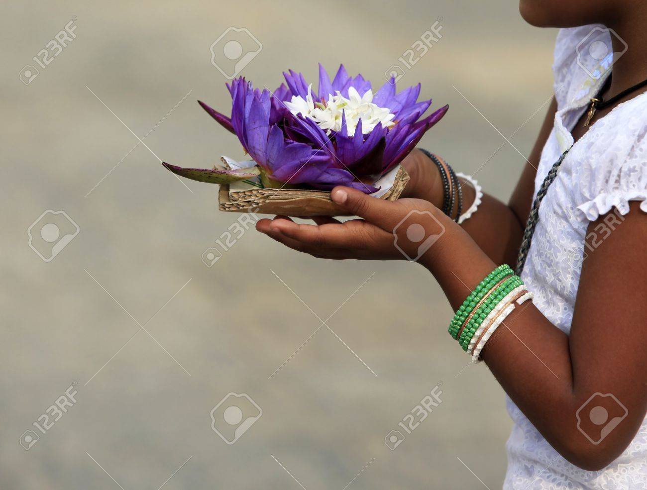 Flowers Of A Lotus In Hands Of The Little Girl Stock Photo Picture