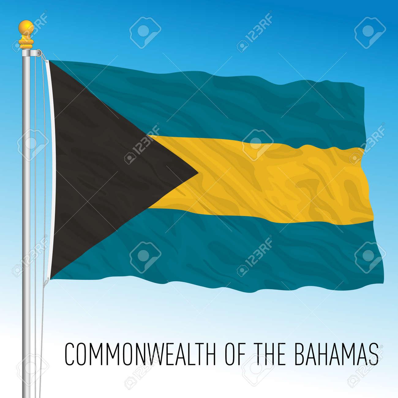 Bahamas official national flag, caribbean country, vector illustration - 167629166