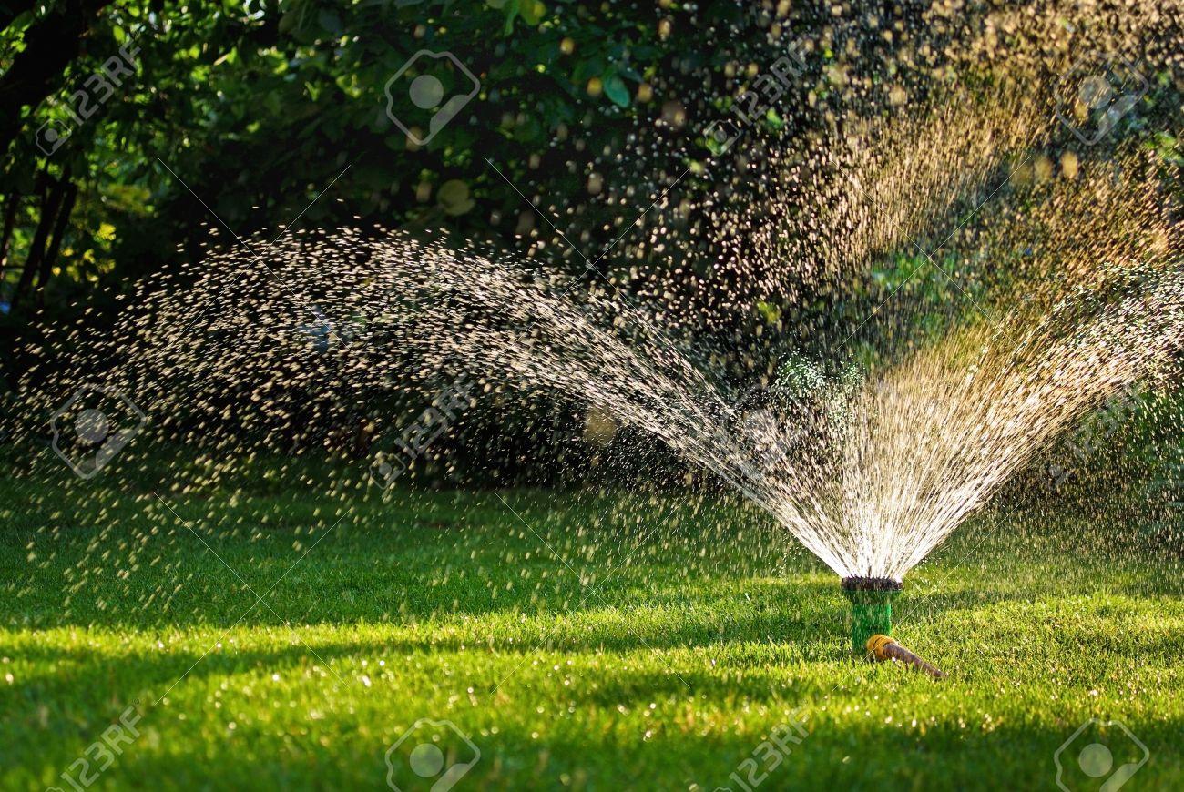 Modern Device Of Irrigation Garden Irrigation System   Technique Of Watering  In The Garden Lawn Sprinkler
