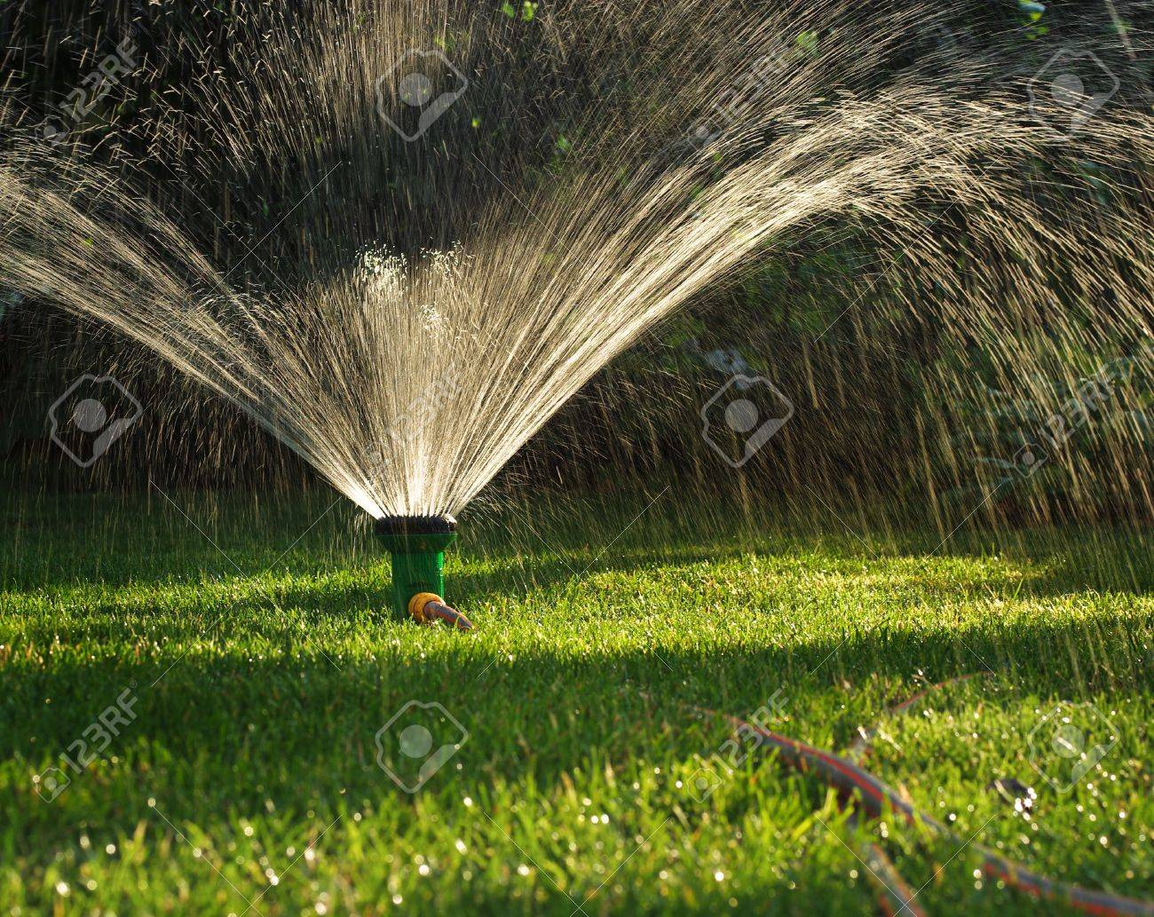 spraying device watering spr stock garden technique sprinkler irrigation photo lawn in system the of