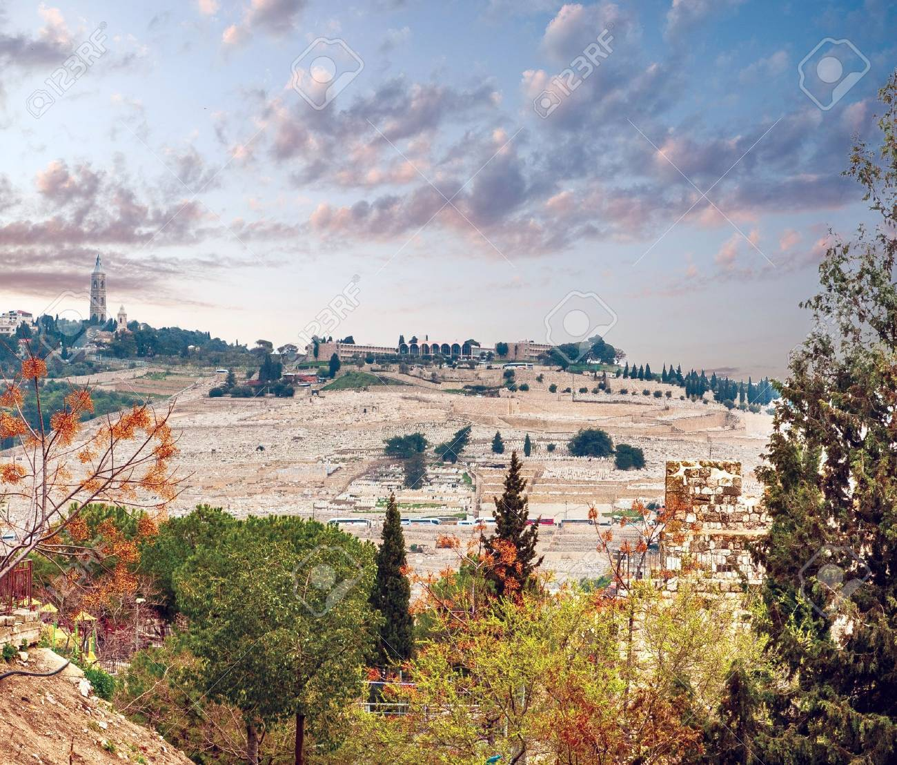 View from the Jerusalem on the Mountain of Olives . Israel Stock Photo - 12978774