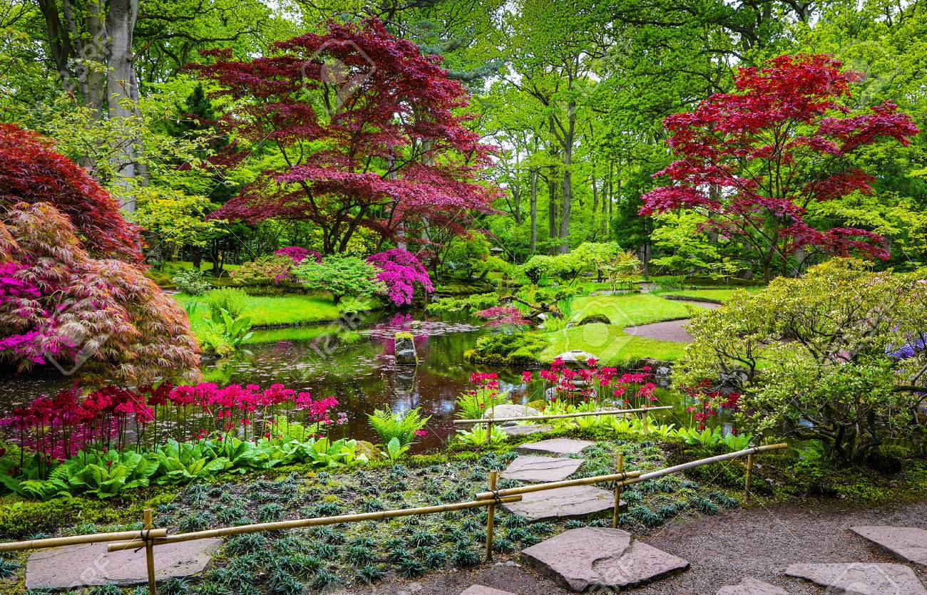 Traditional Japanese Garden In The Hague Stock Photo Picture And