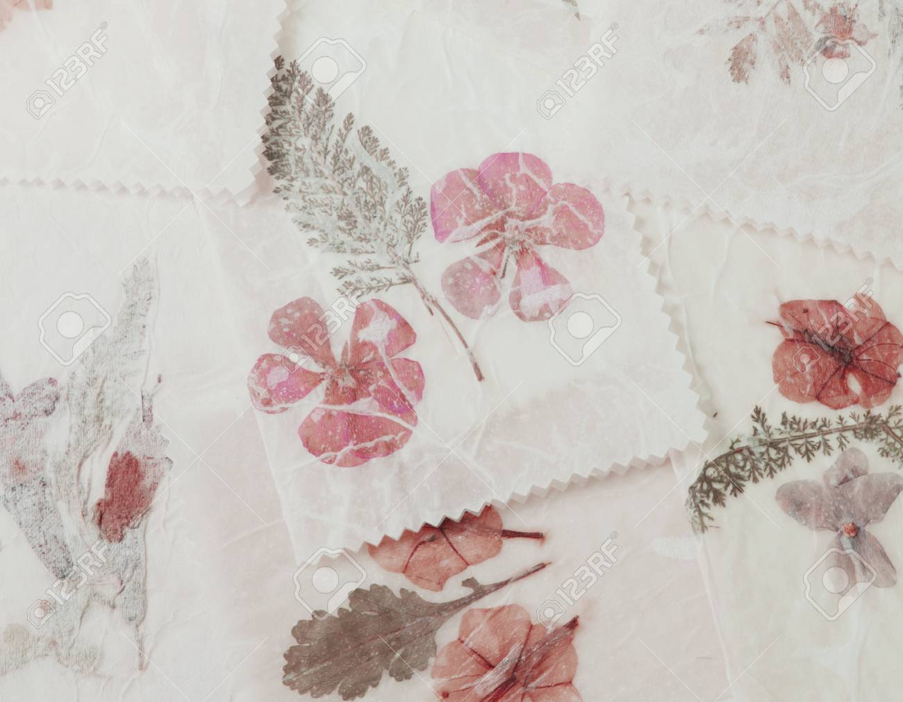 Pressing Flowers Using Waxed Paper Pressed Flower Paper Send A
