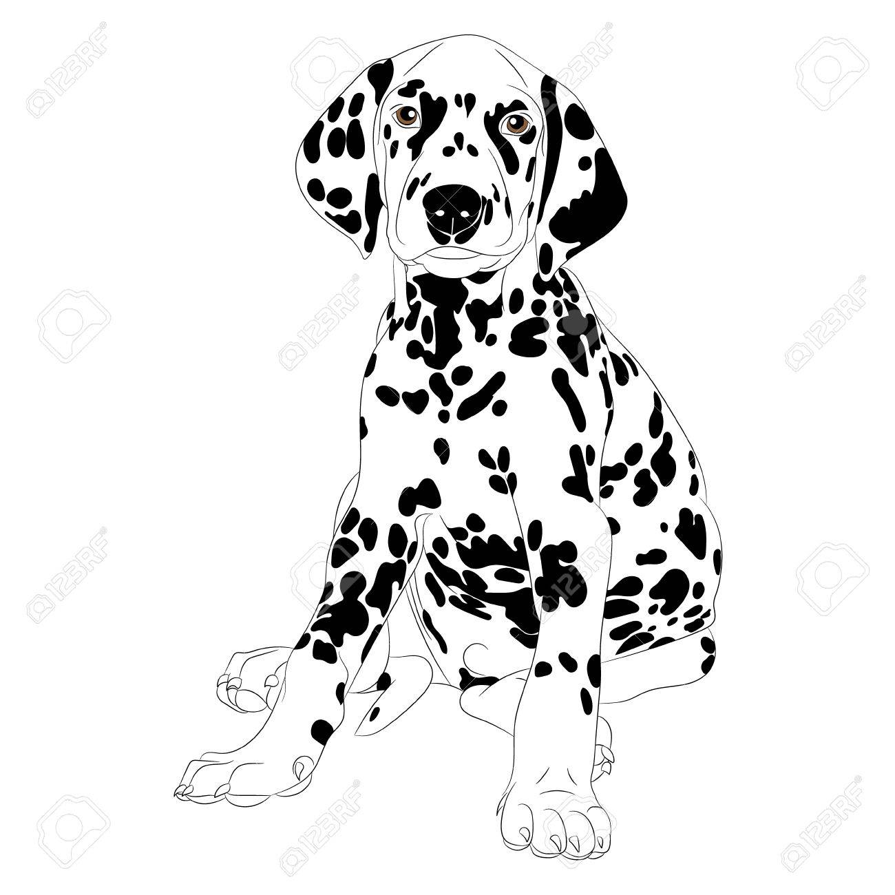 Ilustración De Un Cachorro De Perro Dálmata Lindo Que Se Sienta ...