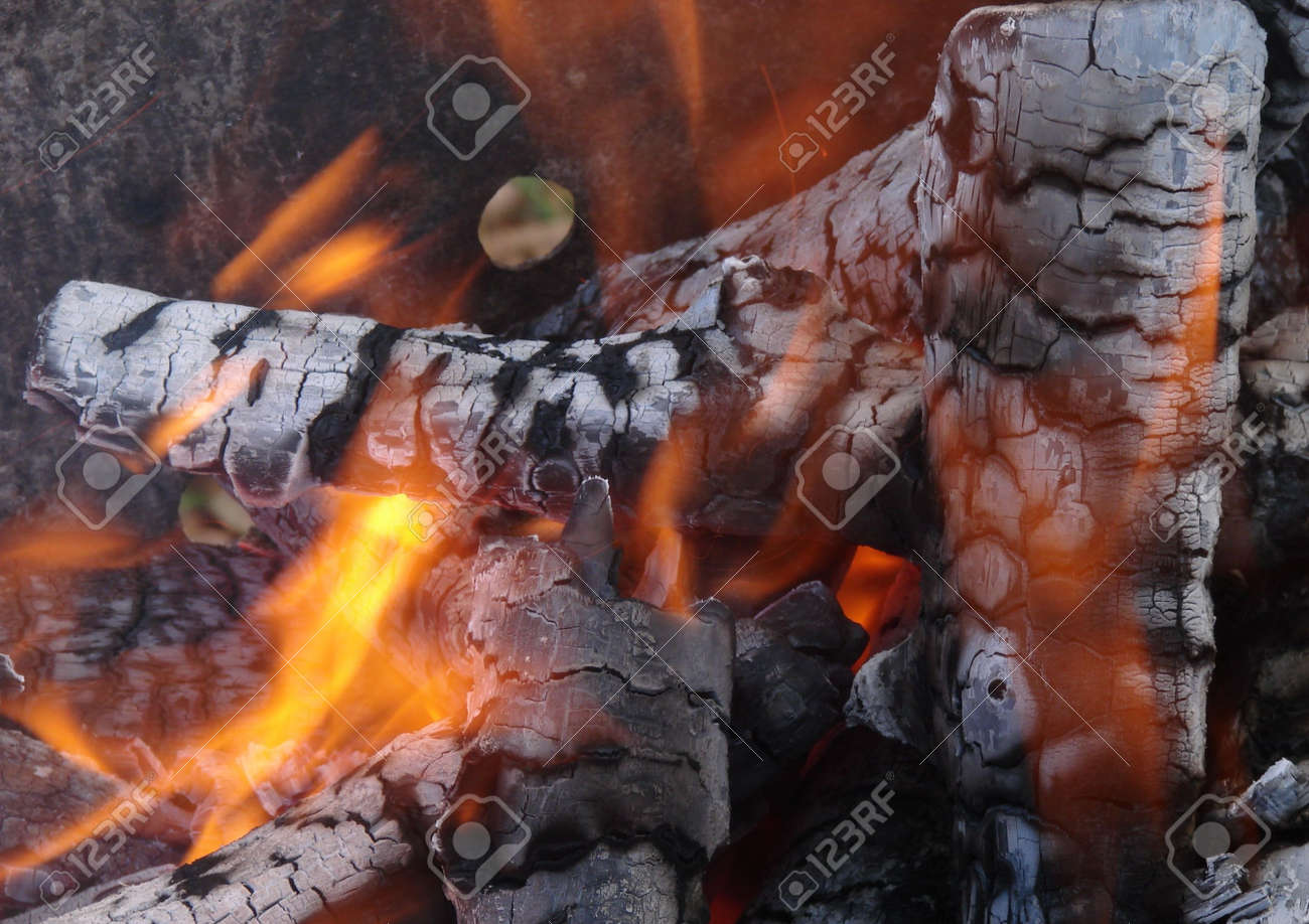 Flaming Wooden Coal Logs Of Camping Fireplace 15 Stock Photo